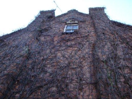 viney-house