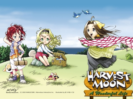 The 3(ONLY 3!!) girls from the Wonderful Life game, first on Gamecube, then ported to PS2.