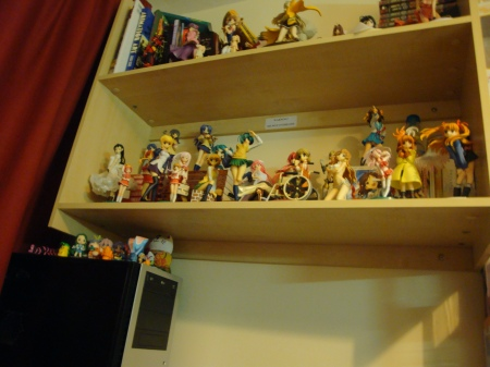 My shelves after they'd been filled with new girlies.