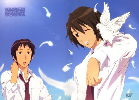 Ahhh Kyon. So very lovely.