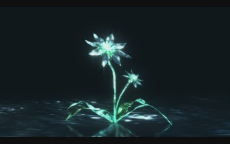 Maybe these are the sweet blue flowers referenced in the title, though I still don't get why sweet was added when its just Aoi Hana. Is hana just one flower or more than one?