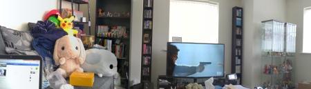 panaramic living room